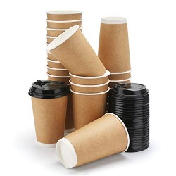 25pcs Disposable Coffee Cups With Lids, Eusoar 12 oz Disposable Double Walled Hot Cups with Lids, Water Cups, Perfect Travel To Go Party Paper Cups for Hot Coffee, Tea, Chocolate Drinks